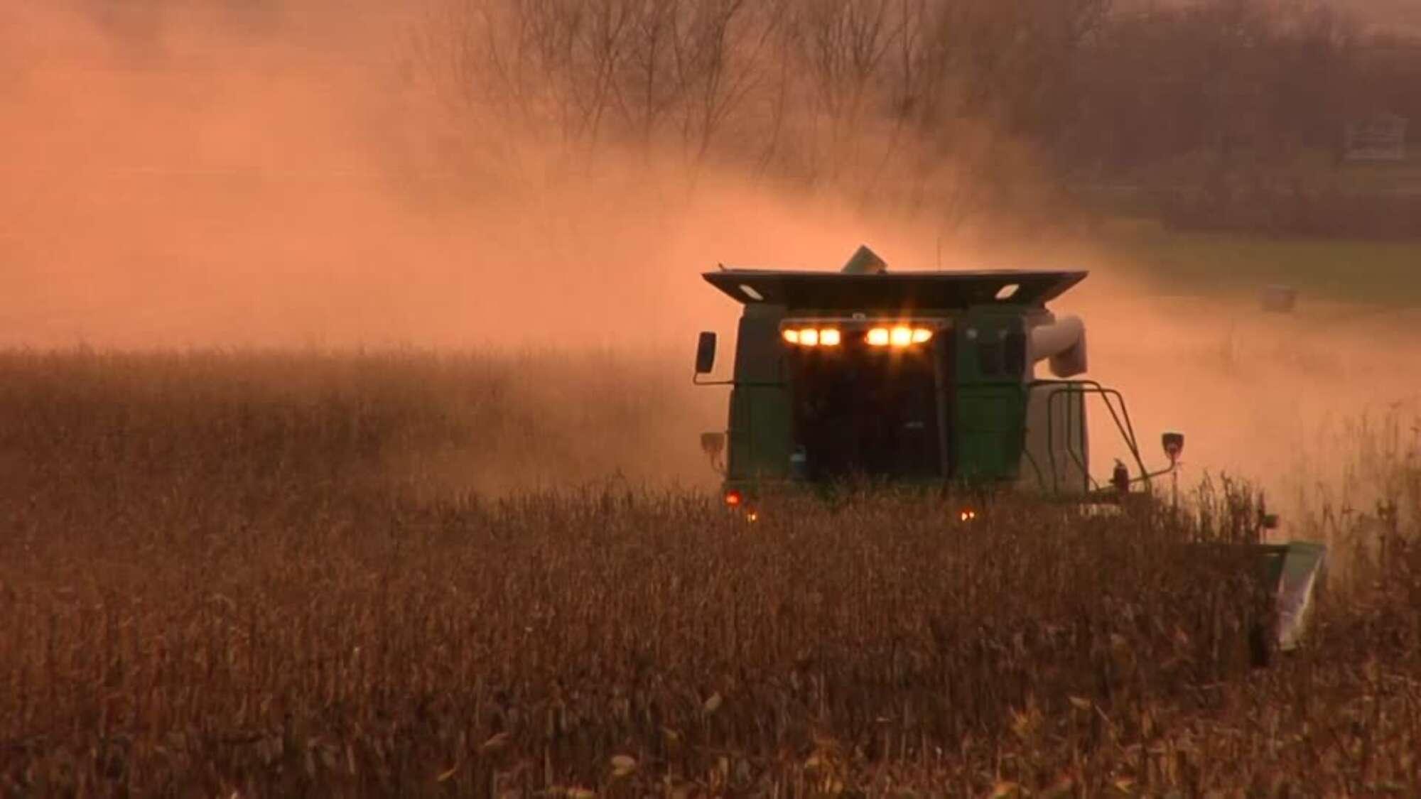 Agri Harvester Machine Harvesting Grain Combine Harvester Ripe Condition  002